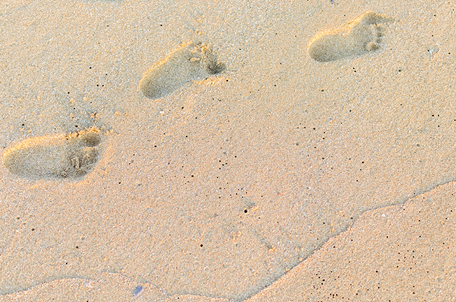 Image of footprints in the sand
